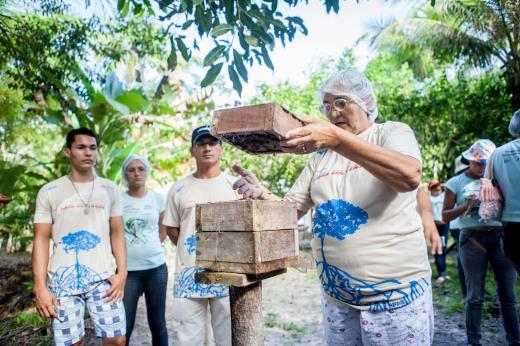 Meliponicultoras de Curuçá produzem e comercializam mel de abelhas nativas da Amazônia no próprio quintal de casa. Foto: Rafael Araújo