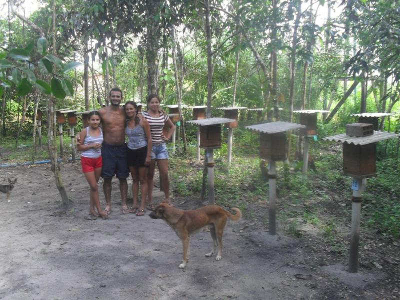 O antigo meliponário da família do Sr Everaldo, beneficiário, foi consolidado segunda as referências do projeto Néctar. São Pedro, Curuçá, PA. Out. 2015