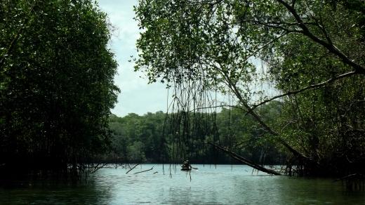 Comunidade de Candeua, em Curuçá, tem como atrativos belos igarapés, mangues e passeios de canoa (Foto: Ana Gabriela Fontoura)