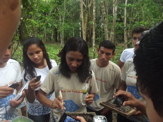 Jovens aprendem sobre estrutura das colmeias.