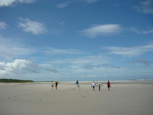 O roteiro oferece uma das poucas oportunidades de visitar a primeira praia depois da foz do Rio Amazonas, a Romana (Foto: Ana Gabriela Fontoura)