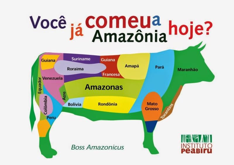BOI MAPA (Voce ja comeu a Amazonia hoje)