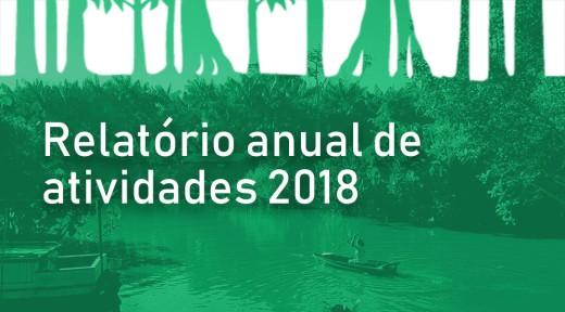 Capa2-Relatório-anual-2018